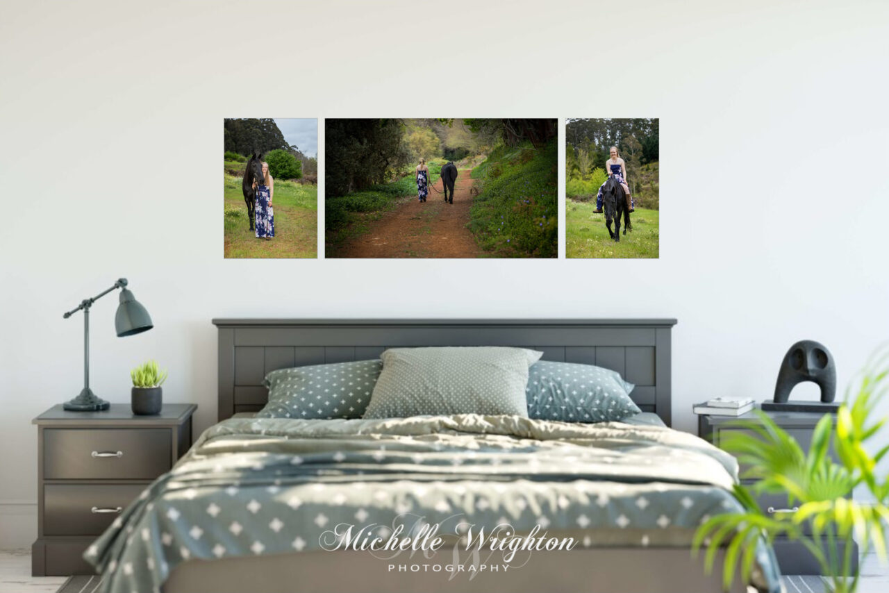 Fine Art Horse photography bedroom decor three canvas collection
