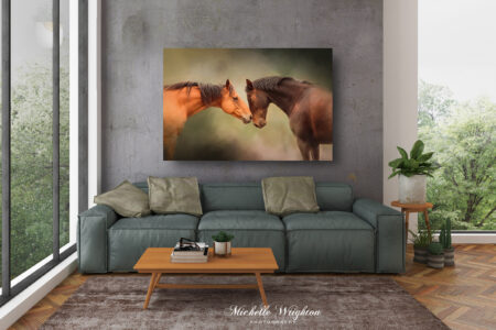 Two horses photograph canvas print in lounge room