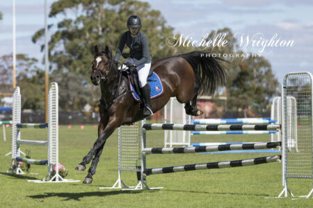 showjumping horse Bunbury agricultural show