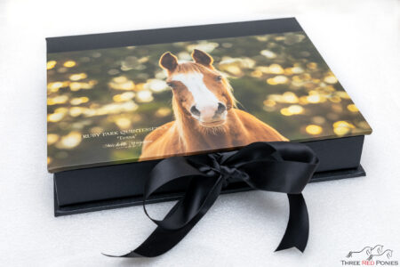 Horse photography art box of matted photo prints