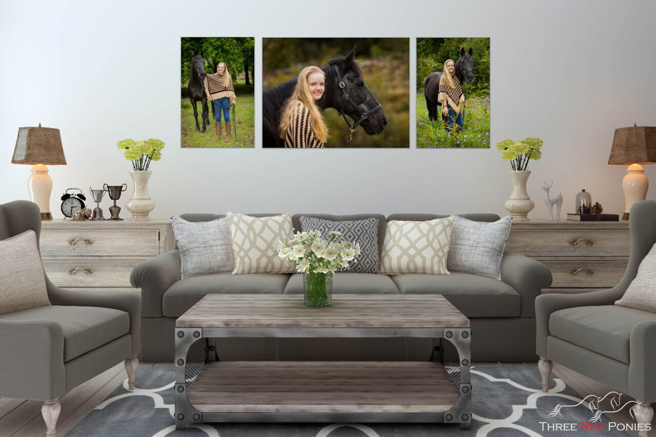 Canvas wall art horse and girl lounge room decor