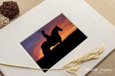 Horse Photography Heirloom Albums