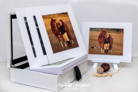 Horse Photographer Individual and Box set Prints
