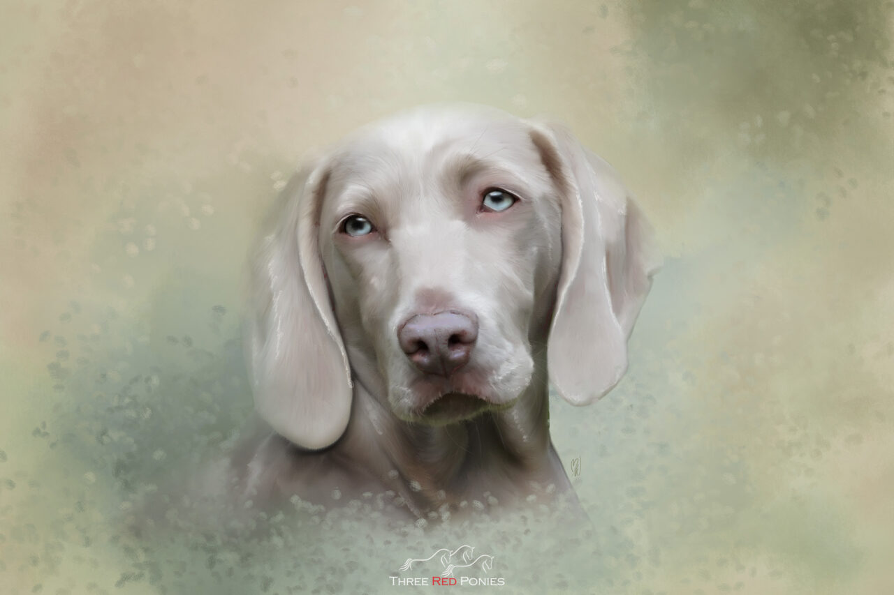 Custom dog painting from your photo