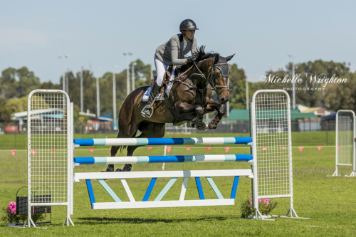 Bunbury Show jumping horse and rider over jump