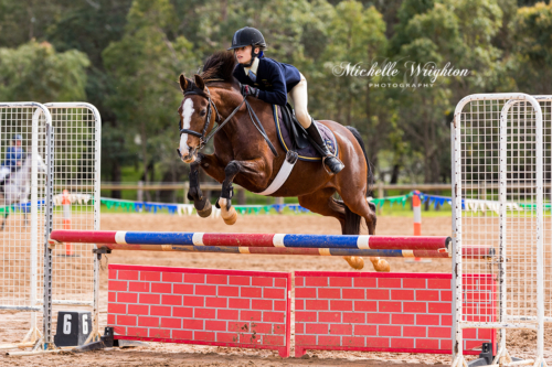 Dardanup Show jumping south-west horse event with horse and rider over brick look jump