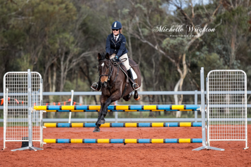 Dryandra showjumping horse and rider over jump poles