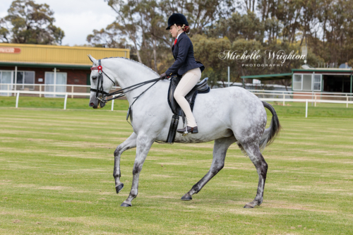 Mount Barker Equestrian Show Official Hack grey horse and rider