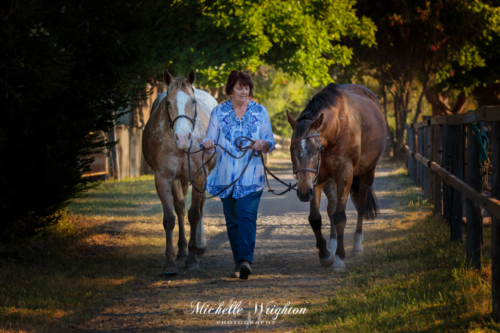 two horses and woman owner walking on pathway