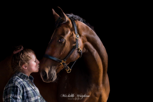 Black background Studio light horse and rider photography