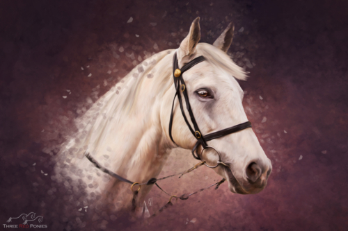 Grey Thoroughbred horse pet portrait painting by Michelle Wrighton
