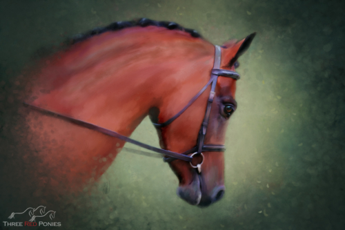 Bay Horse pet portrait fine art painting by Michelle Wrighton