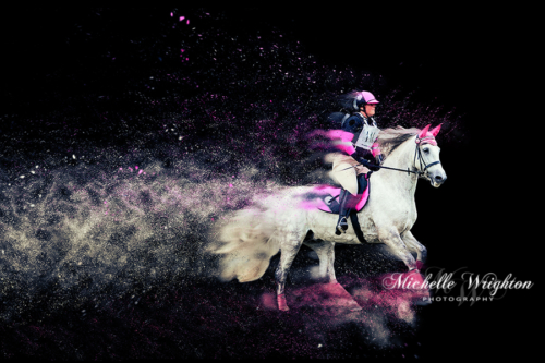 Artistic photo editing Murray ODE grey andalusian horse